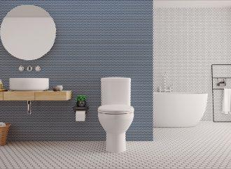Głosowa obsługa toalety – hit czy niepotrzebny gadżet?