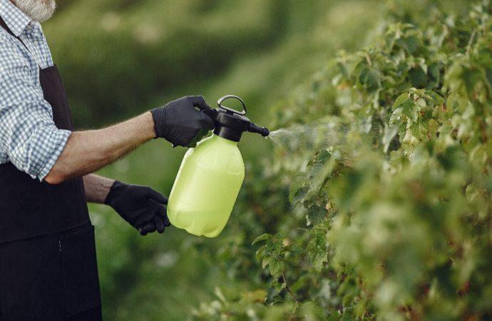 Jak wykorzystać wodę deszczową? Sprytne oszczędzanie wody!